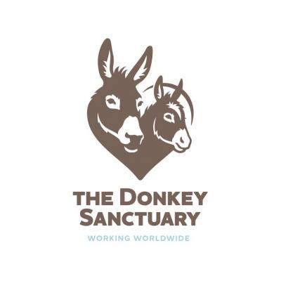 The Donkey Sanctuary Assisted Therapy Centre Belfast
