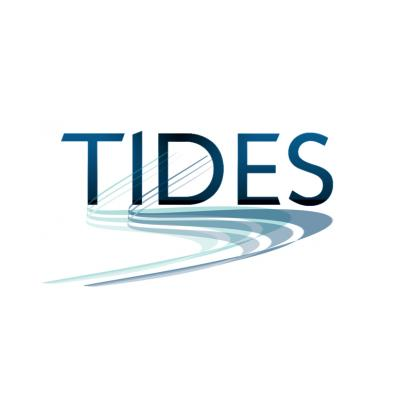 TIDES Training and Consultancy