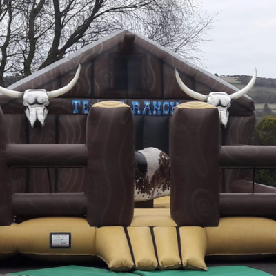 Rodeo Bull hire Northern Ireland