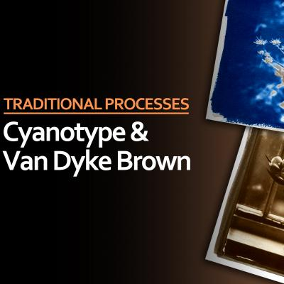 Cyanotype & Van Dyke Brown